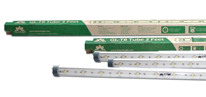 T8 Light Emitting Diode (LED) light tubes
