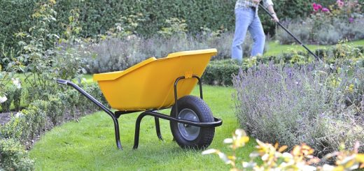Haemmerlin Vibrante Pick Up wheelbarrow from Garden Chic