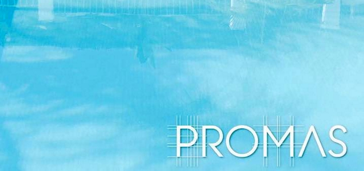 ProMas Building logo
