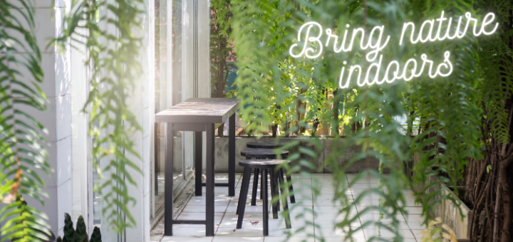 A touch of greenery and colour can lift any space